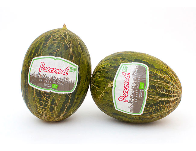Melone procomel bio