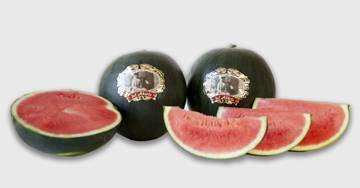 Melons-the-grandfather-watermelon-2