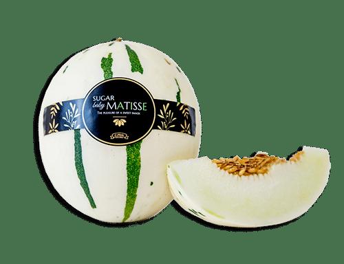 Zucker-Baby-Matisse-4-Melonen