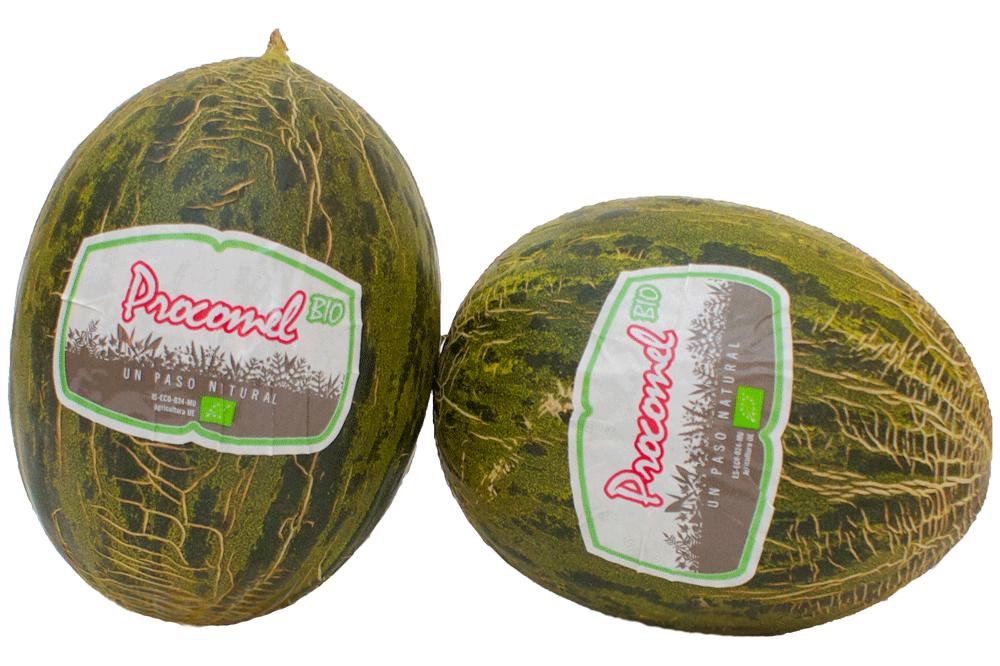 melon_bio_2