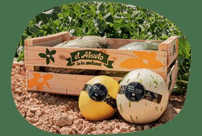 forma-caja-nueva-melones-el-abuelo-min