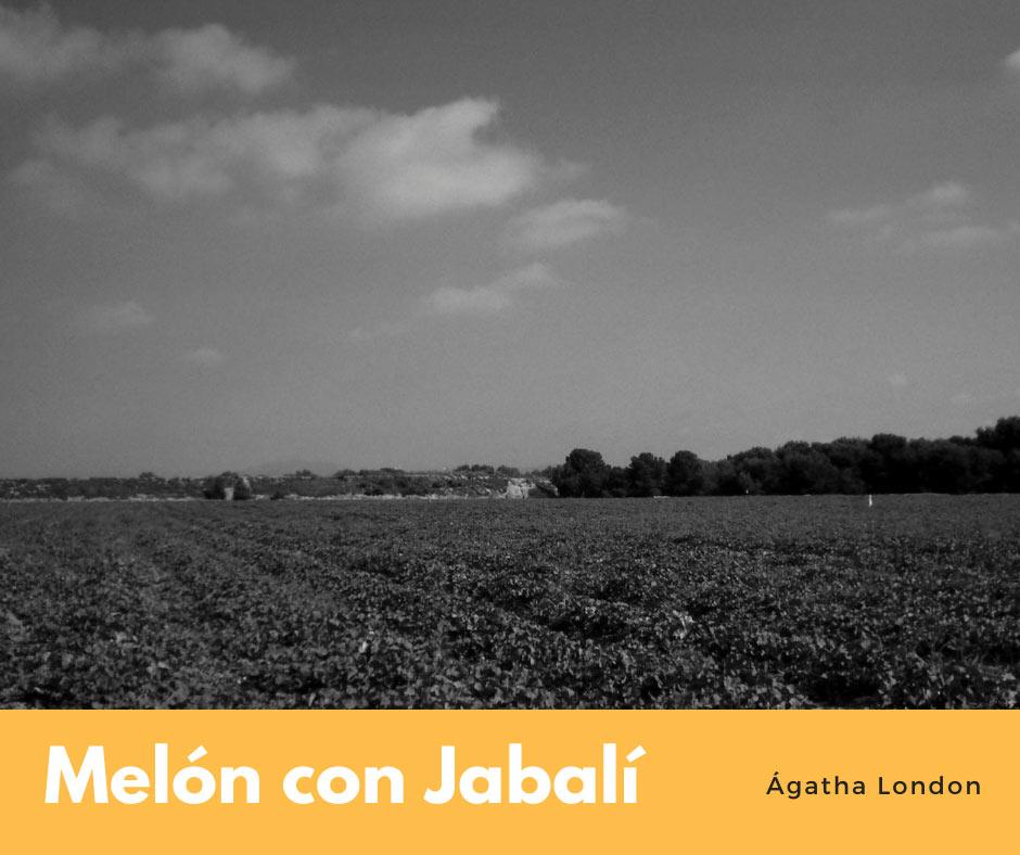 melon-con-jabali