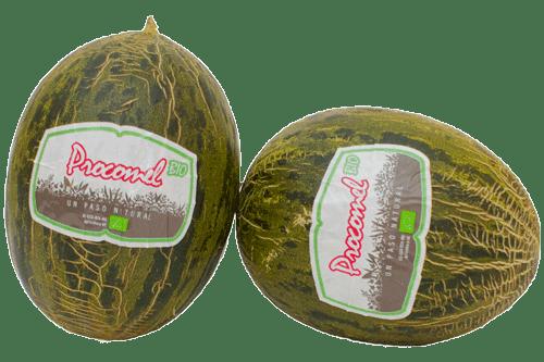 melon_bio_2-min